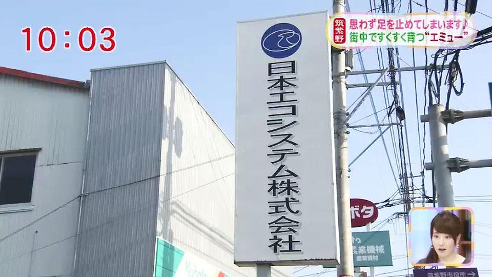日本エコシステム 株式会社 お...